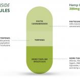 CBD capsules 1500mg info (002)